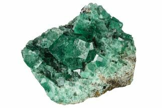 "2.6"" Fluorite Crystal Cluster -  Rogerley Mine For Sale, #143069"