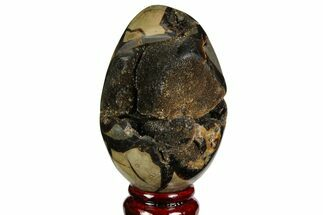 "3.9"" Septarian ""Dragon Egg"" Geode - Black Crystals For Sale, #143141"