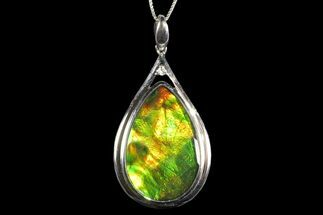 Buy Ammolite Pendant with Sterling Silver - Chain Included - #143572