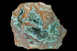 "Buy 2.4"" Fibrous Rosasite & Aurichalcite Crystal Association - Mexico - #144556"