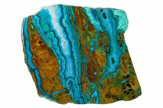 Chrysocolla & Malachite - Fossils For Sale - #146526