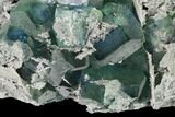 "6.1"" Blue-Green Fluorite on Sparkling Quartz - China - #147031-3"