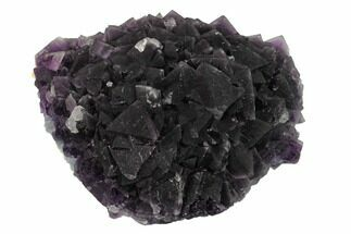 Fluorite - Fossils For Sale - #146904