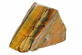"Buy 3.2"" Polished Tiger's Eye Section - South Africa - #148246"