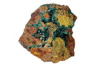 "2.6"" Gemmy Dioptase Clusters with Mimetite - N'tola Mine, Congo For Sale, #148466"