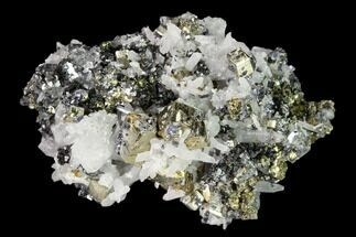 "1.85"" Chalcopyrite, Pyrite, Sphalerite and Quartz Association - Peru For Sale, #149579"