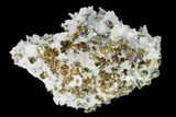 "2.8"" Chalcopyrite, Pyrite, Sphalerite and Quartz Association - Peru - #149590-1"