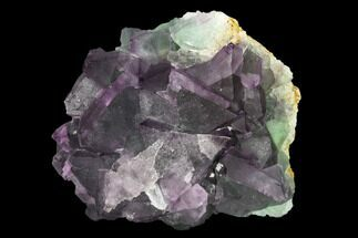 Fluorite - Fossils For Sale - #149670