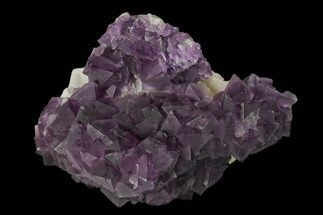 "2.8"" Purple Octahedral Fluorite Crystal Cluster - China For Sale, #149675"