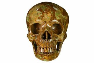 "Buy 5"" Realistic, Polished Autumn Jasper Skull  - #150877"