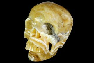 "Buy 7"" Realistic, Polished, Banded Orange Calcite Skull - Fluorescent! - #150925"