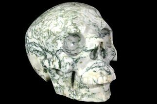 "Buy 5.8"" Realistic, Polished Tree Agate Skull  - #151195"