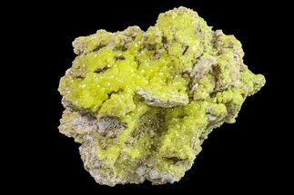 "Buy 3.4"" Yellow Sulfur Crystals on Matrix - Steamboat Springs, Nevada - #154351"