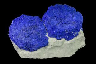 Azurite - Fossils For Sale - #155646