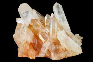 "Buy 7.5"" Tangerine Quartz Crystal Cluster (Large Crystals) - Madagascar - #156952"