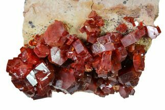 "2.4"" Deep Red Vanadinite Crystal Cluster - Morocco For Sale, #157034"