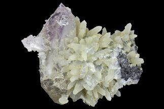 "2.7"" Double-Terminated Amethyst Crystal on Quartz - See Video! For Sale, #163976"