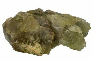 "Buy 3.2"" Yellow-Green, Cubic Fluorite Crystal Cluster - Morocco - #164551"