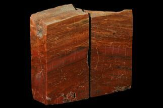 "5.1"" Tall, Arizona Petrified Wood Bookends - Red & Orange For Sale, #166073"