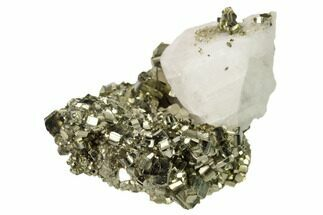 Pyrite & Calcite - Fossils For Sale - #167709