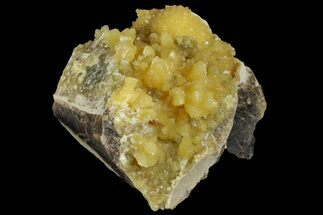 Calcite & Barite - Fossils For Sale - #170688