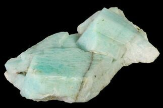 "2.7"" Amazonite Crystal Cluster - 10 Percenter Claim, Colorado For Sale, #168071"