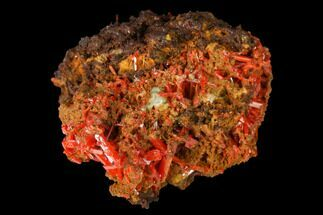 Crocoite - Fossils For Sale - #171705