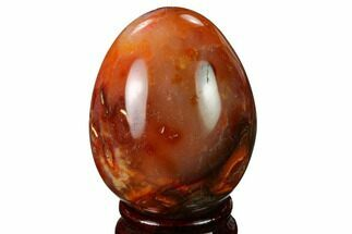 "Buy 2.7"" Colorful, Polished Carnelian Agate Egg - Madagascar - #172729"