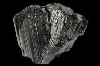 "Buy 2.8"" Terminated Black Tourmaline (Schorl) Crystal Cluster - Madagascar - #174142"