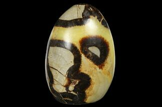 "Buy 3.8"" Free-Standing, Polished Septarian - Madagascar - #174598"