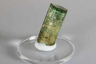 "1.7"" Green Elbaite Tourmaline Crystal - Urubu Mine, Brazil For Sale, #175535"