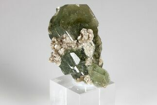 "1.5"" Pristine Fluorapatite Crystal Cluster with Muscovite - Portugal For Sale, #175418"