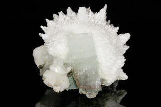 "Buy 4.6"" Scolecite Crystal Spray with Apophyllite and Stilbite - India - #176833"
