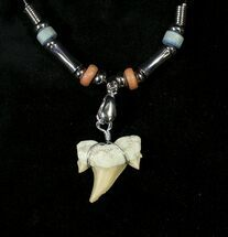 Buy Authentic Fossil Shark Tooth Necklace (Back In Stock) - #19651
