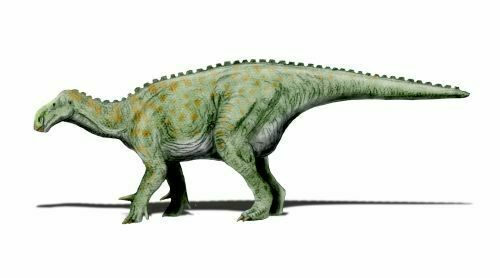 An artists rendering of Iguanodon.  By Nobu Tamura http://paleoexhibit.blogspot.com