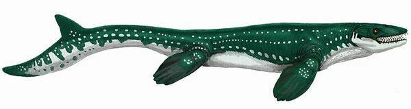 Artists reconstruction of the mosasaur Prognathodon saturator.
