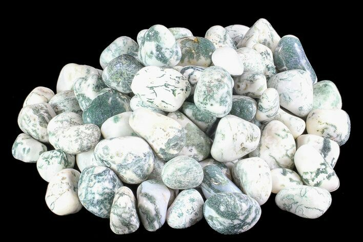 Bulk Polished Tree Agate - 8 ounces - Photo 1