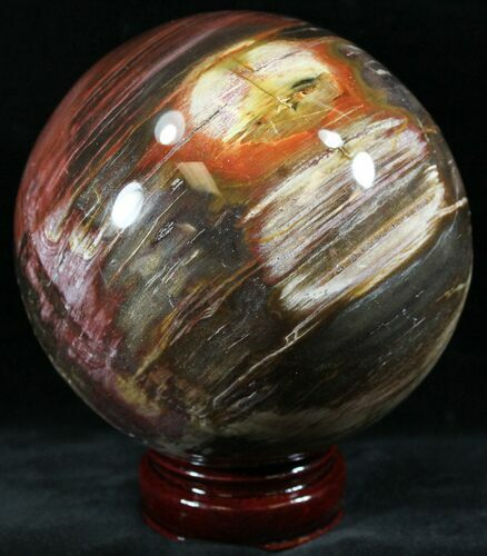 "4.5"" Colorful Petrified Wood Sphere"