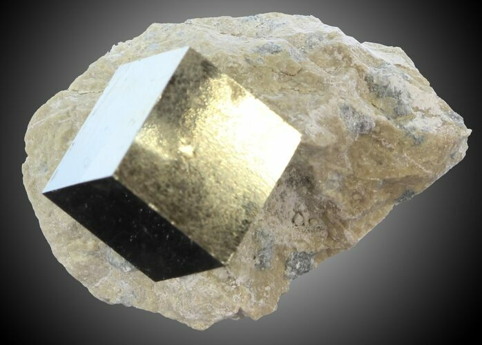 ".47"" Pyrite Cube on Matrix - Navajun, Spain"