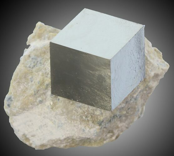 ".48"" wide Pyrite Cube on Matrix - Navajun, Spain"