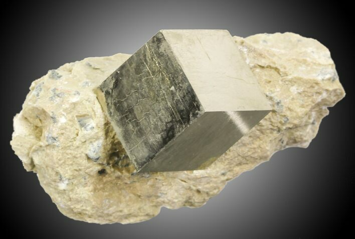 ".84"" Pyrite Cube In Matrix - Navajun, Spain"