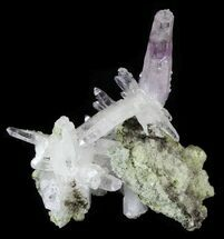 "Buy 1.81"" Amethyst on Matrix - Las Vigas, Mexico  - #31510"