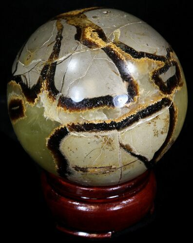 "2.54"" Polished Septarian Sphere"