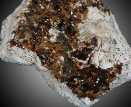 Garnet var Spessartine - Fossils For Sale - #32574