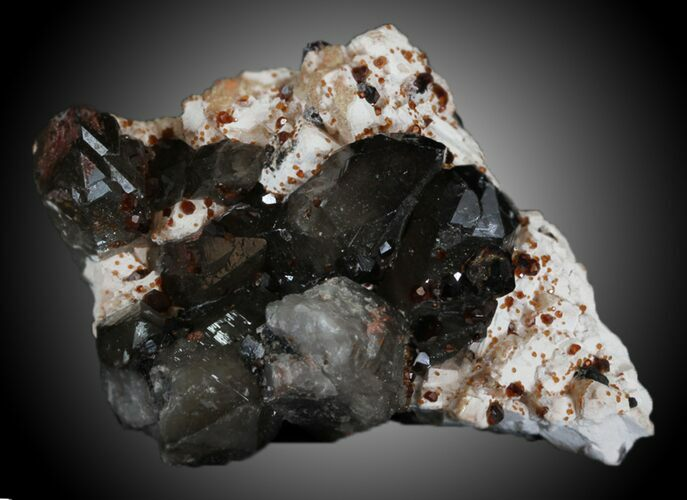 "3.65"" Spessartine Garnet & Smoky Quartz - China"