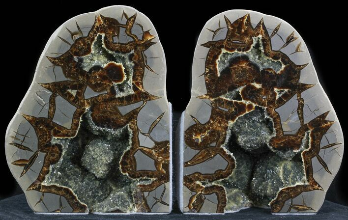 "6.7"" Polished Septarian Bookends - Crystal Filled"