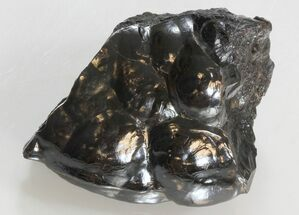 Hematite - Fossils For Sale - #34161