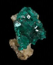 Dioptase - Fossils For Sale - #34980