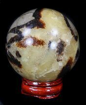 Septarian - Fossils For Sale - #36063