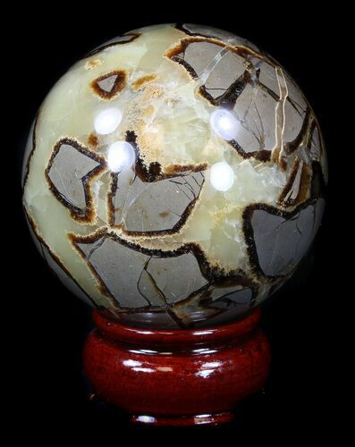 "2.65"" Polished Septarian Sphere"